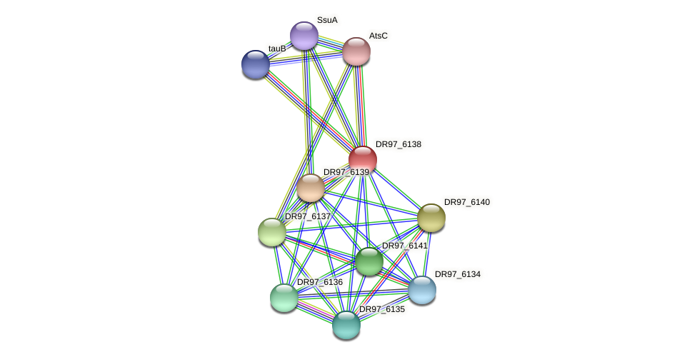 DR97_6138 protein (Pseudomonas aeruginosa) - STRING interaction network