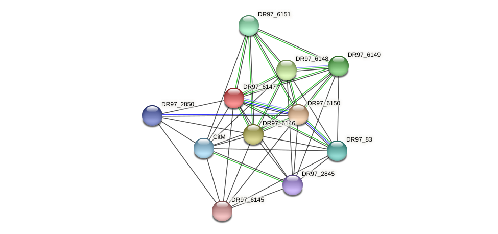 DR97_6147 protein (Pseudomonas aeruginosa) - STRING interaction network
