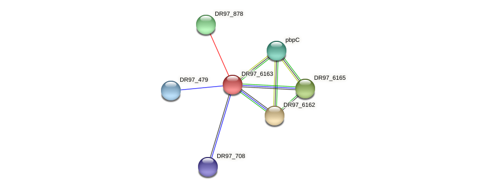 DR97_6163 protein (Pseudomonas aeruginosa) - STRING interaction network