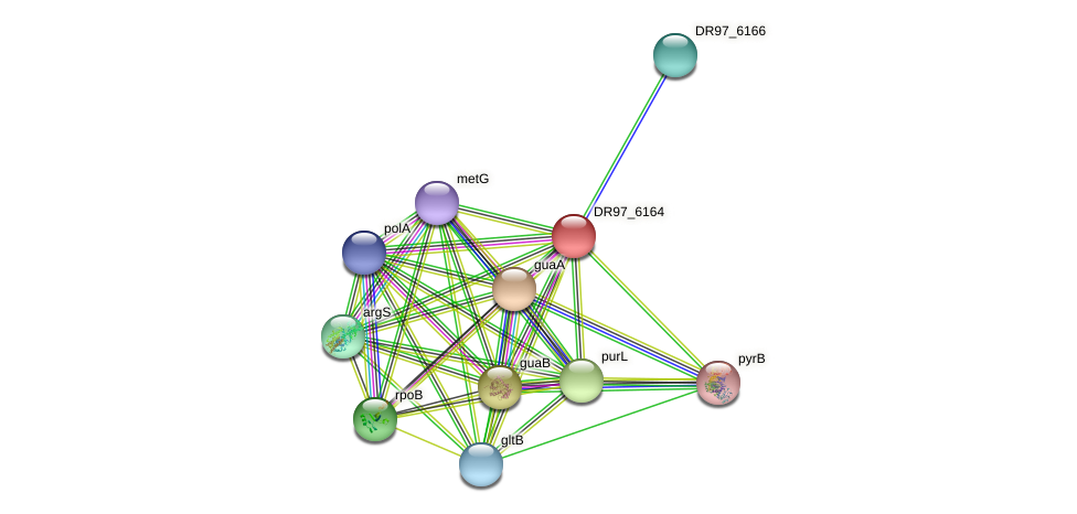 DR97_6164 protein (Pseudomonas aeruginosa) - STRING interaction network