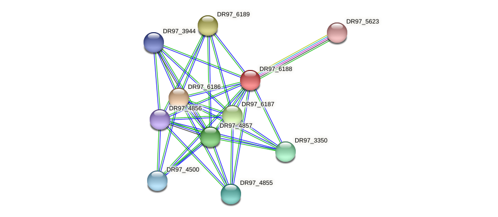 DR97_6188 protein (Pseudomonas aeruginosa) - STRING interaction network