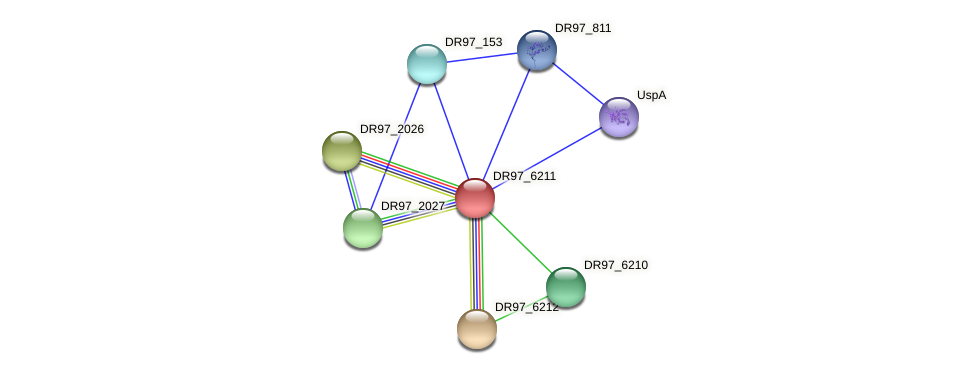 DR97_6211 protein (Pseudomonas aeruginosa) - STRING interaction network