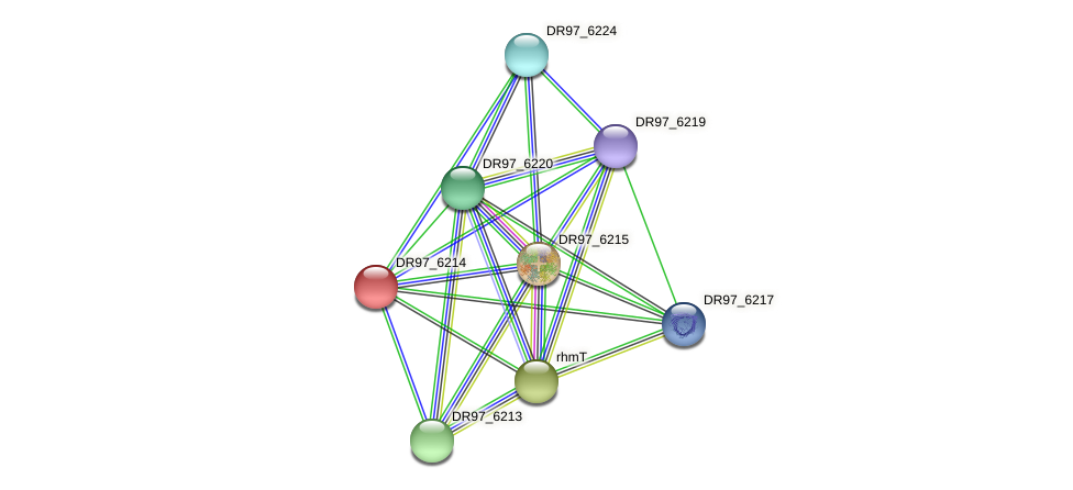 DR97_6214 protein (Pseudomonas aeruginosa) - STRING interaction network