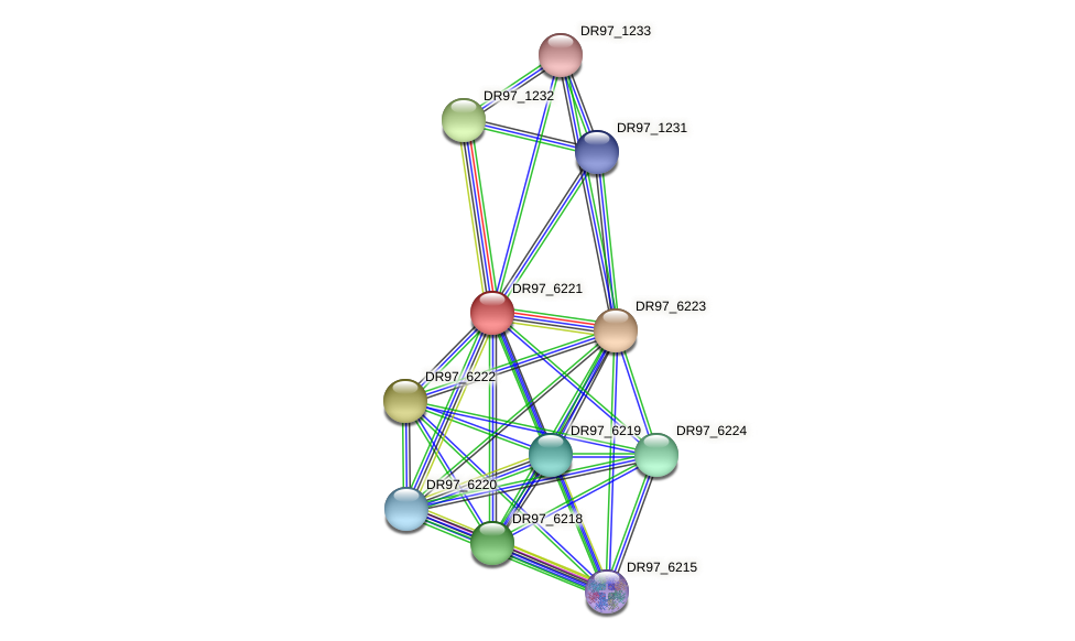 DR97_6221 protein (Pseudomonas aeruginosa) - STRING interaction network