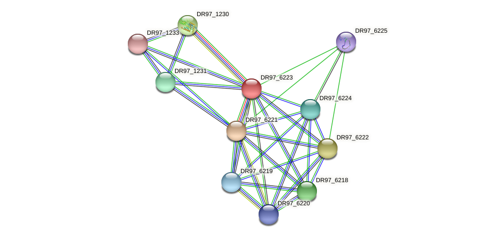 DR97_6223 protein (Pseudomonas aeruginosa) - STRING interaction network