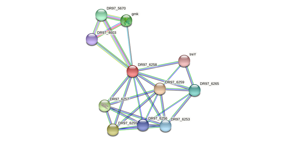 DR97_6258 protein (Pseudomonas aeruginosa) - STRING interaction network
