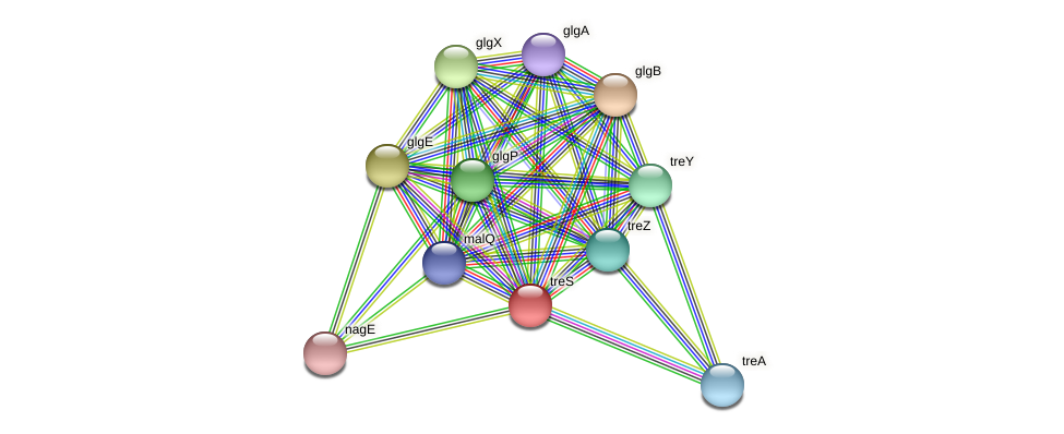 treS protein (Pseudomonas aeruginosa) - STRING interaction network