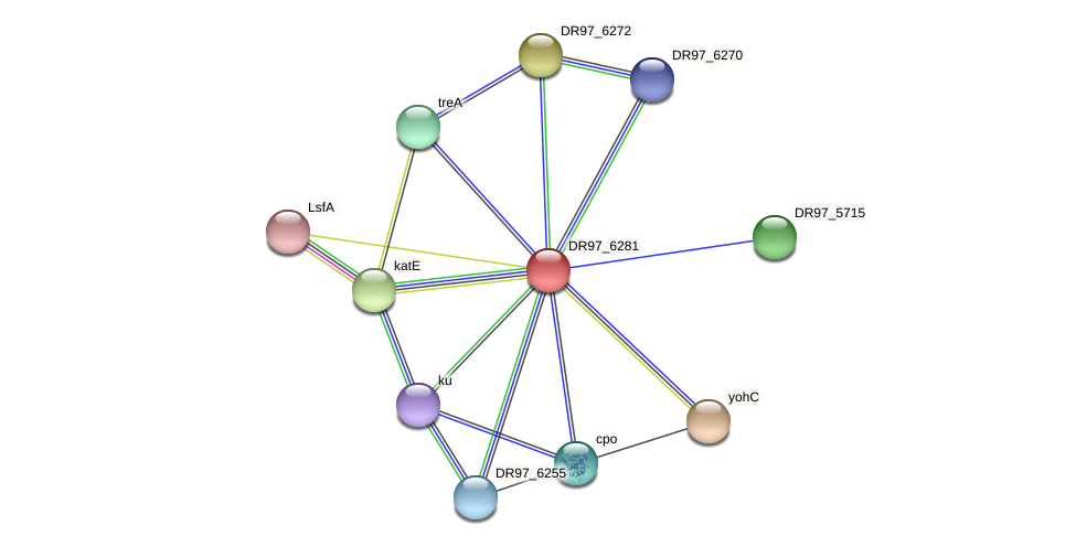 DR97_6281 protein (Pseudomonas aeruginosa) - STRING interaction network
