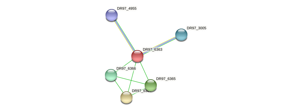 DR97_6363 protein (Pseudomonas aeruginosa) - STRING interaction network