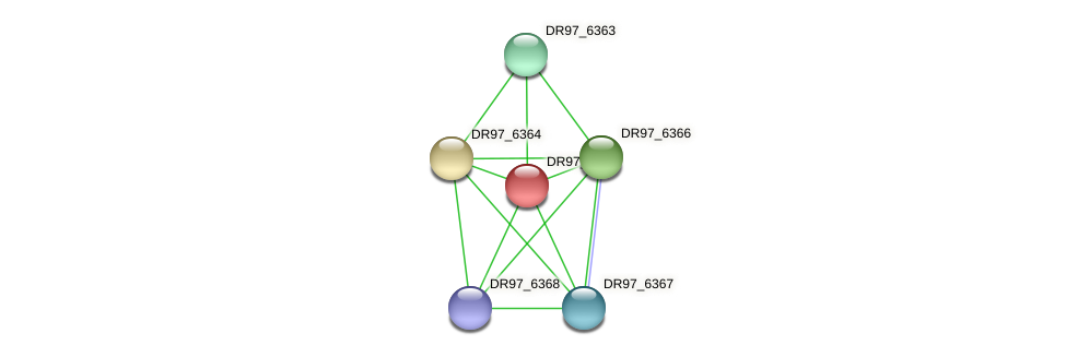 DR97_6365 protein (Pseudomonas aeruginosa) - STRING interaction network