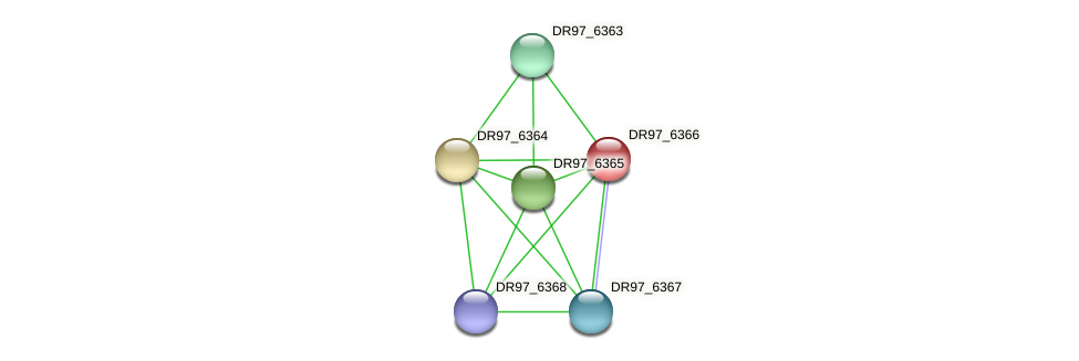 DR97_6366 protein (Pseudomonas aeruginosa) - STRING interaction network