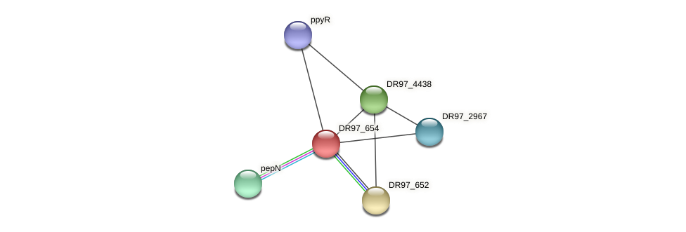 DR97_654 protein (Pseudomonas aeruginosa) - STRING interaction network