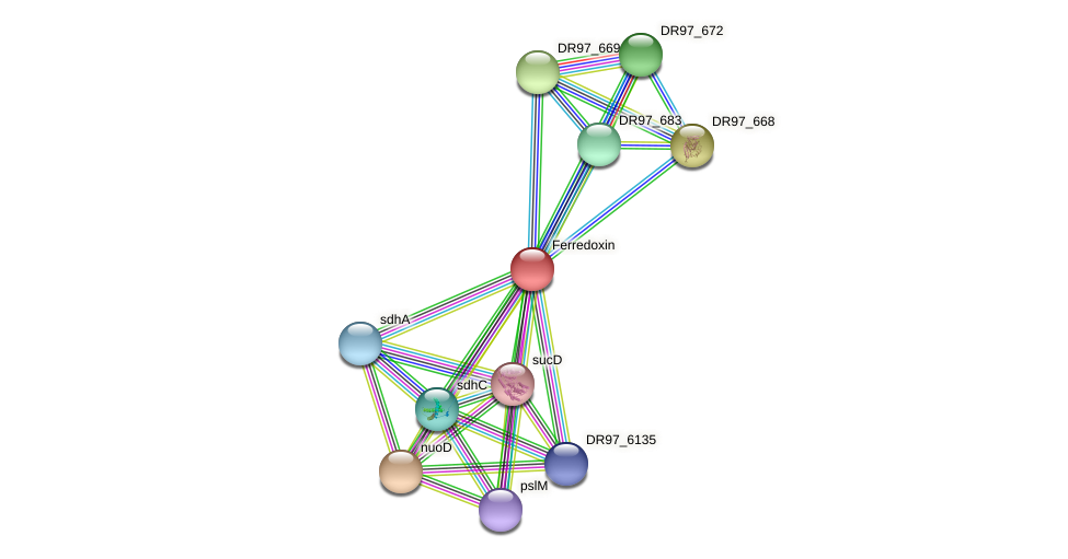 DR97_670 protein (Pseudomonas aeruginosa) - STRING interaction network