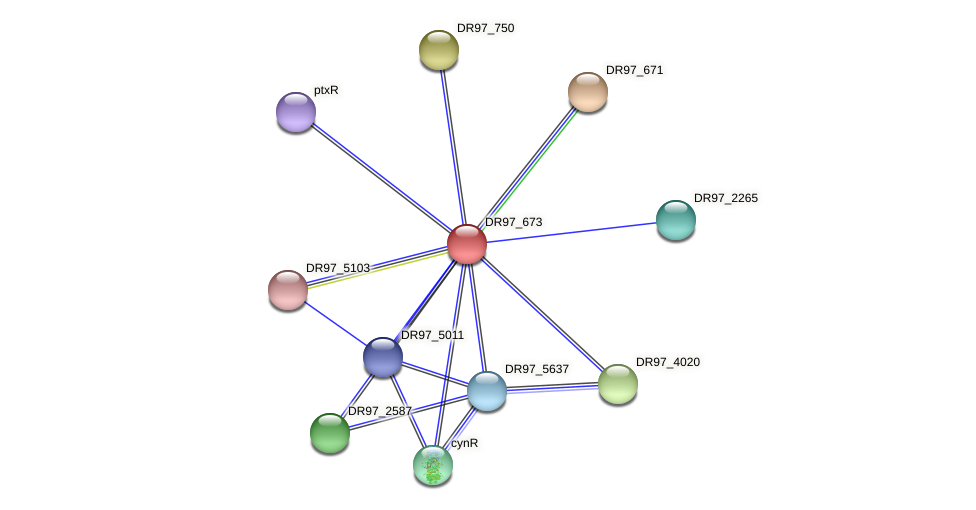 DR97_673 protein (Pseudomonas aeruginosa) - STRING interaction network