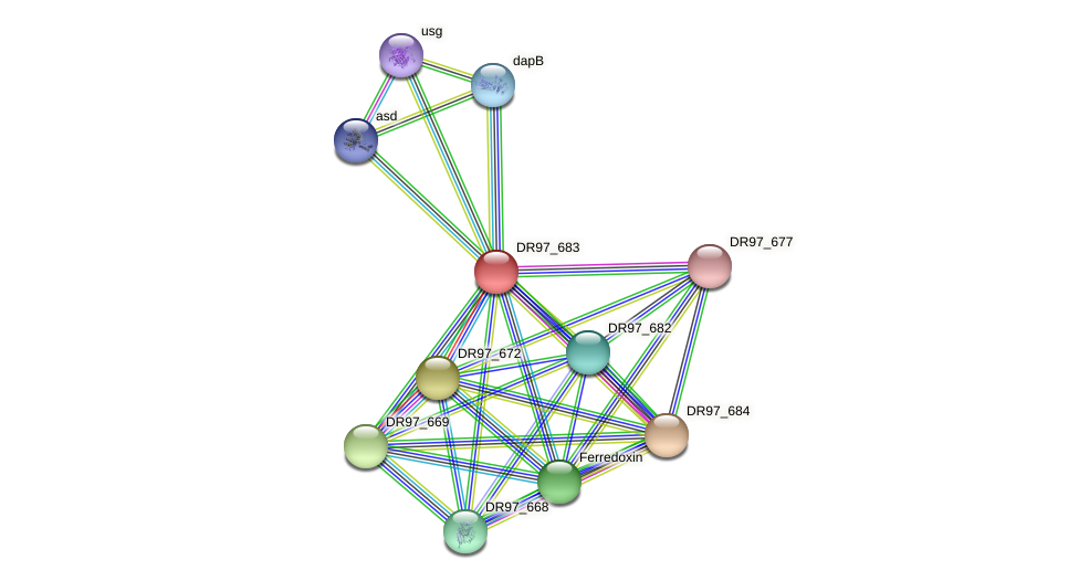 DR97_683 protein (Pseudomonas aeruginosa) - STRING interaction network