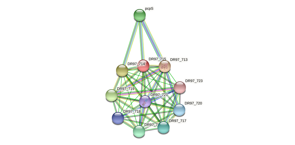 DR97_715 protein (Pseudomonas aeruginosa) - STRING interaction network