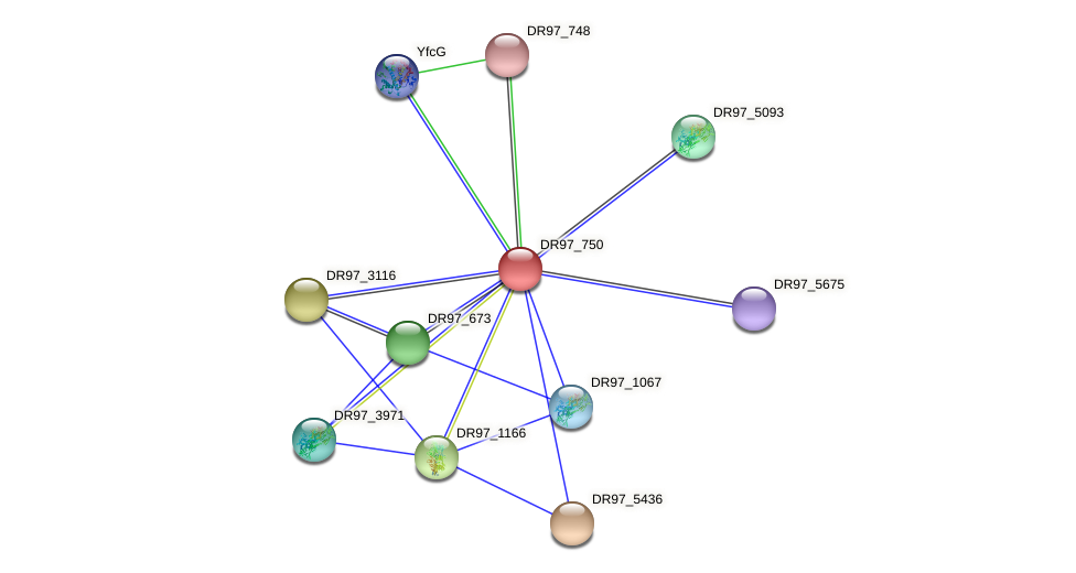 DR97_750 protein (Pseudomonas aeruginosa) - STRING interaction network