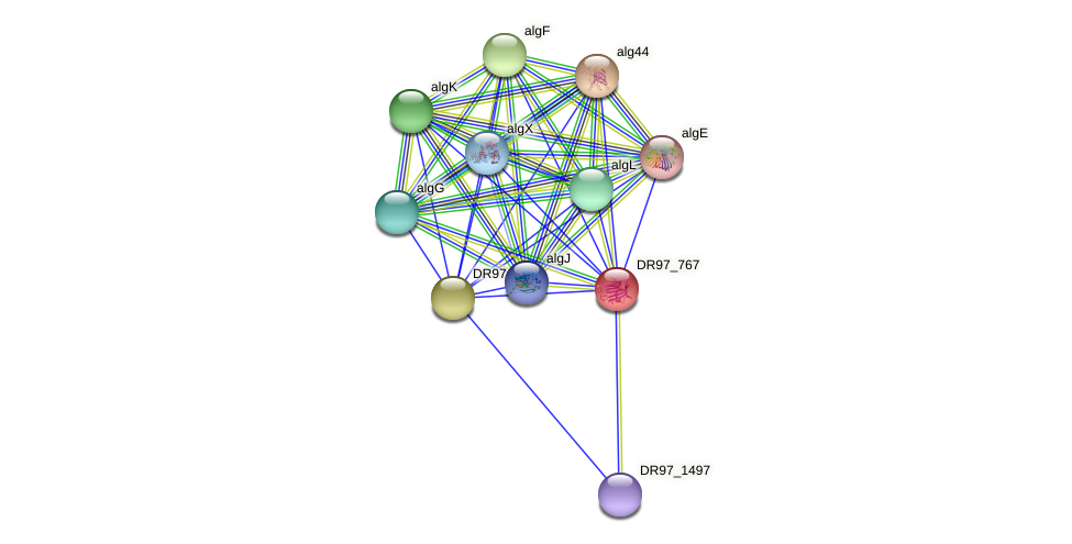 DR97_767 protein (Pseudomonas aeruginosa) - STRING interaction network