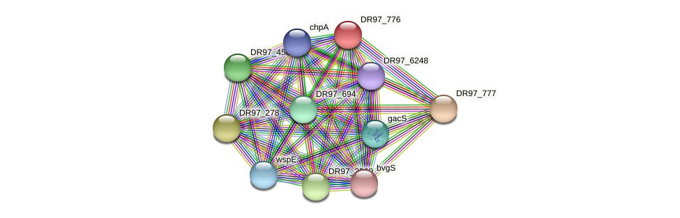 DR97_776 protein (Pseudomonas aeruginosa) - STRING interaction network
