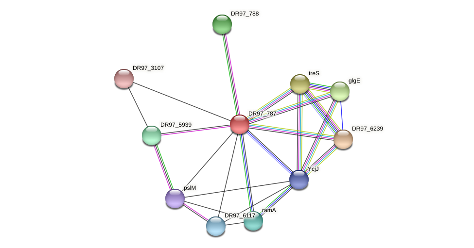 DR97_787 protein (Pseudomonas aeruginosa) - STRING interaction network