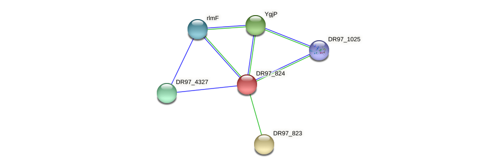 DR97_824 protein (Pseudomonas aeruginosa) - STRING interaction network
