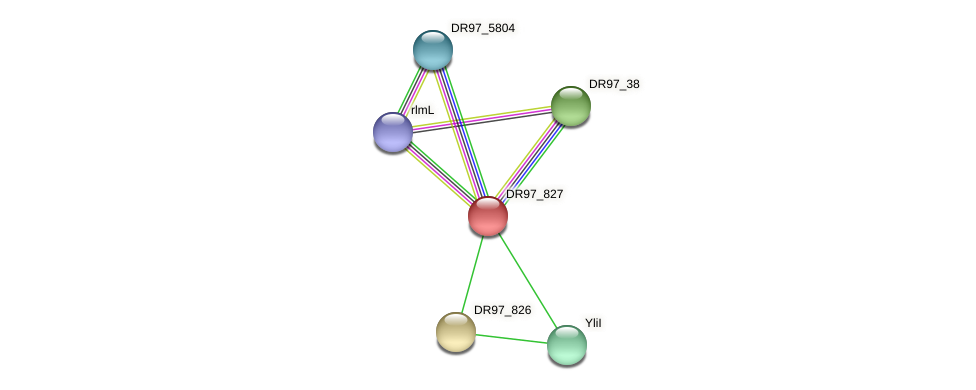 DR97_827 protein (Pseudomonas aeruginosa) - STRING interaction network