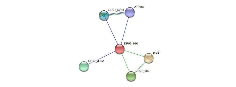 DR97_980 protein (Pseudomonas aeruginosa) - STRING interaction network