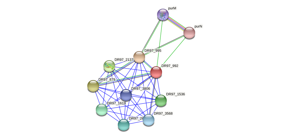 DR97_992 protein (Pseudomonas aeruginosa) - STRING interaction network