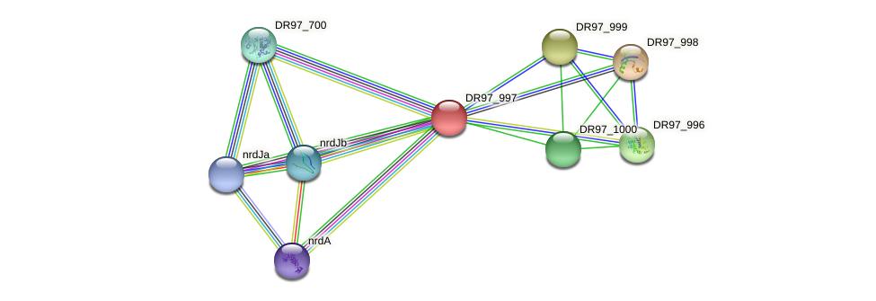 DR97_997 protein (Pseudomonas aeruginosa) - STRING interaction network
