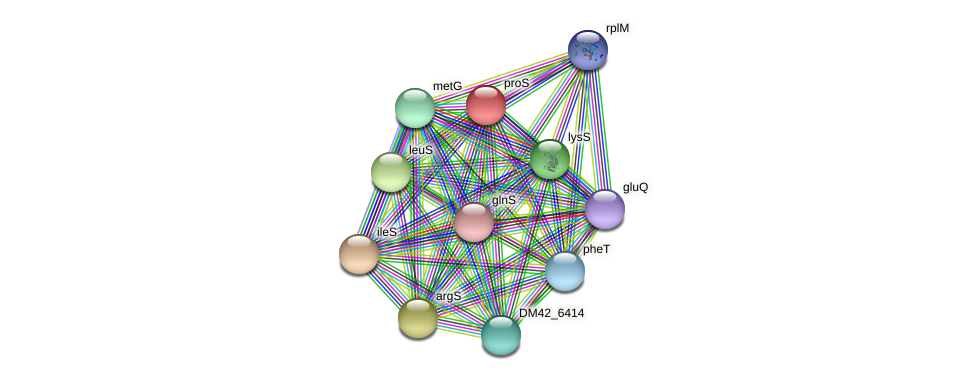 proS protein (Burkholderia cepacia) - STRING interaction network