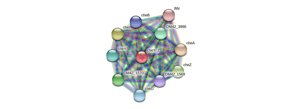 WI67_00990 protein (Burkholderia cepacia) - STRING interaction network