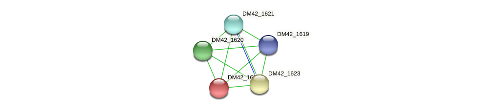 DM42_1622 protein (Burkholderia cepacia) - STRING interaction network