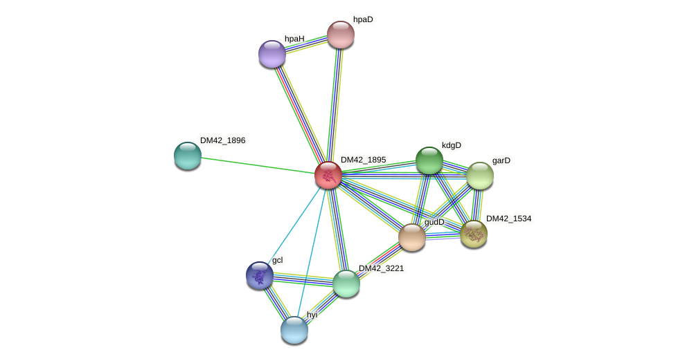 WI67_16595 protein (Burkholderia cepacia) - STRING interaction network
