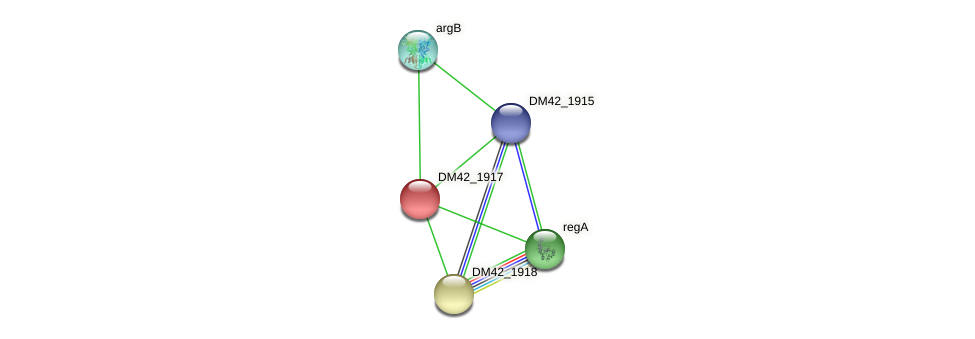 DM42_1917 protein (Burkholderia cepacia) - STRING interaction network