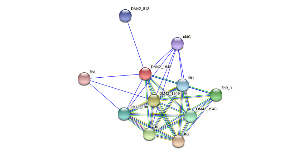 WI67_16320 protein (Burkholderia cepacia) - STRING interaction network