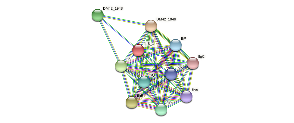 WI67_16310 protein (Burkholderia cepacia) - STRING interaction network