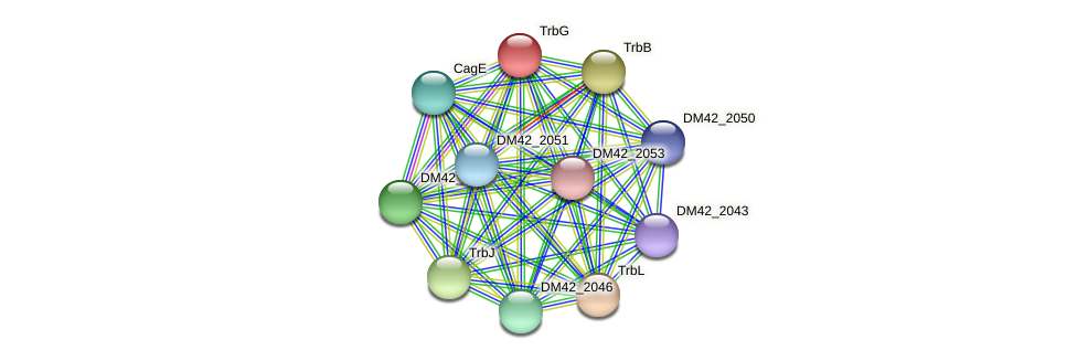 DM42_2045 protein (Burkholderia cepacia) - STRING interaction network