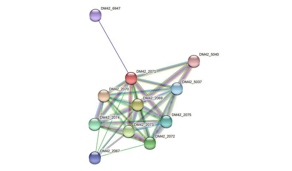 DM42_2071 protein (Burkholderia cepacia) - STRING interaction network