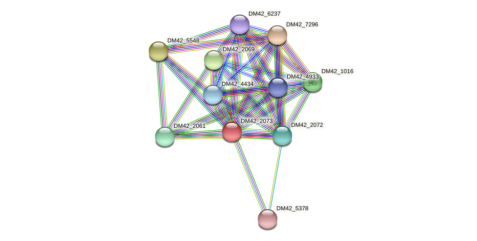 DM42_2073 protein (Burkholderia cepacia) - STRING interaction network