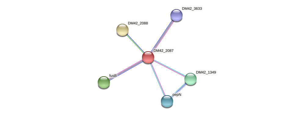 DM42_2087 protein (Burkholderia cepacia) - STRING interaction network