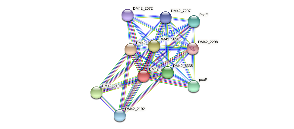 WL94_25485 protein (Burkholderia cepacia) - STRING interaction network