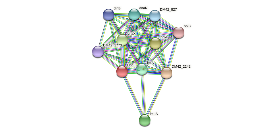 DM42_2243 protein (Burkholderia cepacia) - STRING interaction network