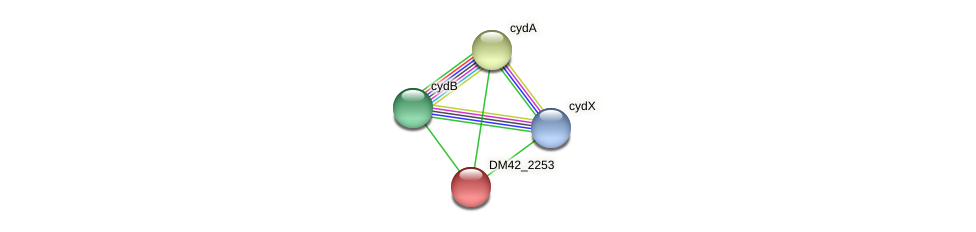 WL94_13955 protein (Burkholderia cepacia) - STRING interaction network