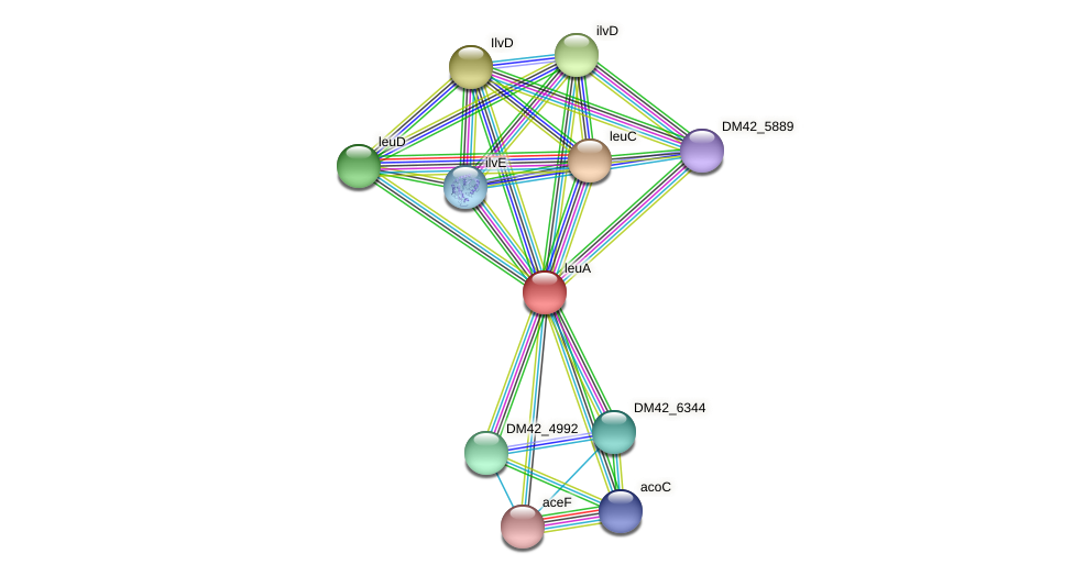 WL94_13975 protein (Burkholderia cepacia) - STRING interaction network