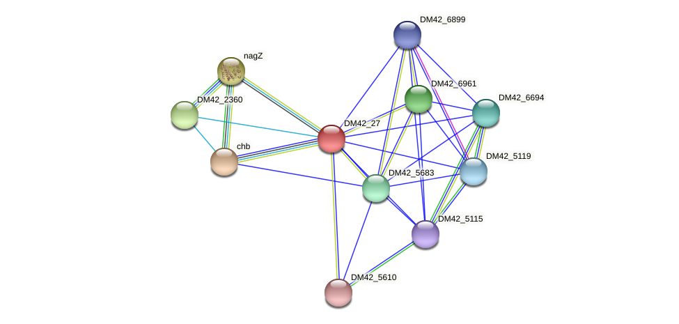 WL94_29145 protein (Burkholderia cepacia) - STRING interaction network