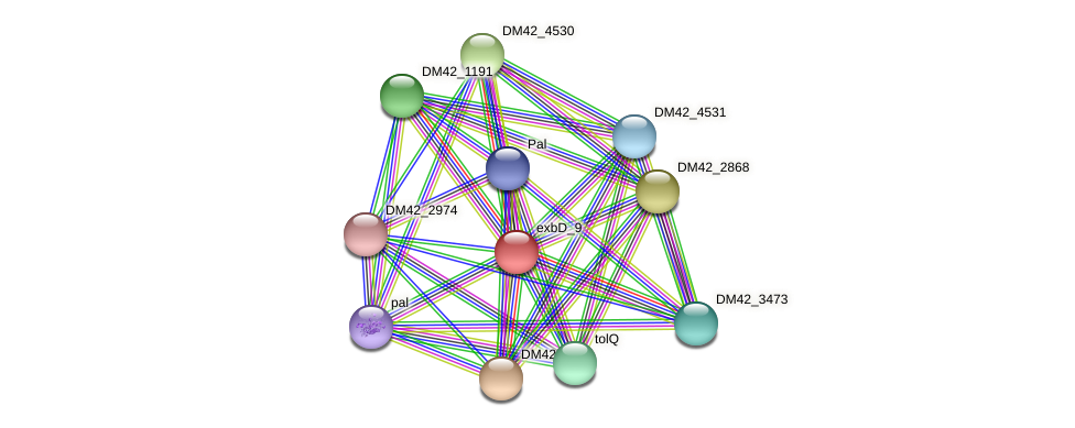WI67_11955 protein (Burkholderia cepacia) - STRING interaction network
