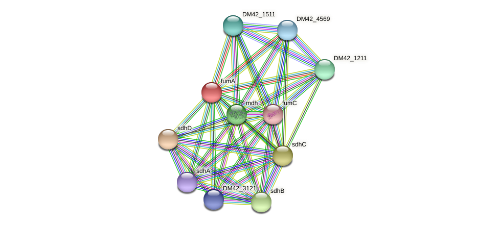 WI67_11925 protein (Burkholderia cepacia) - STRING interaction network