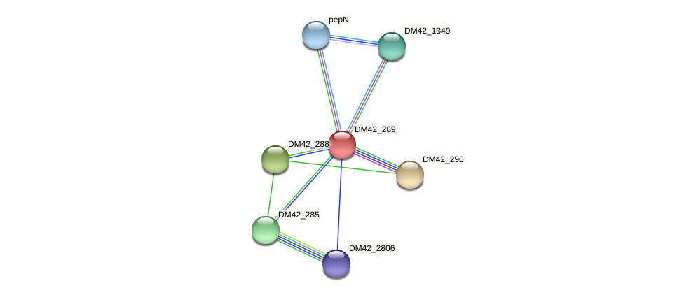 DM42_289 protein (Burkholderia cepacia) - STRING interaction network
