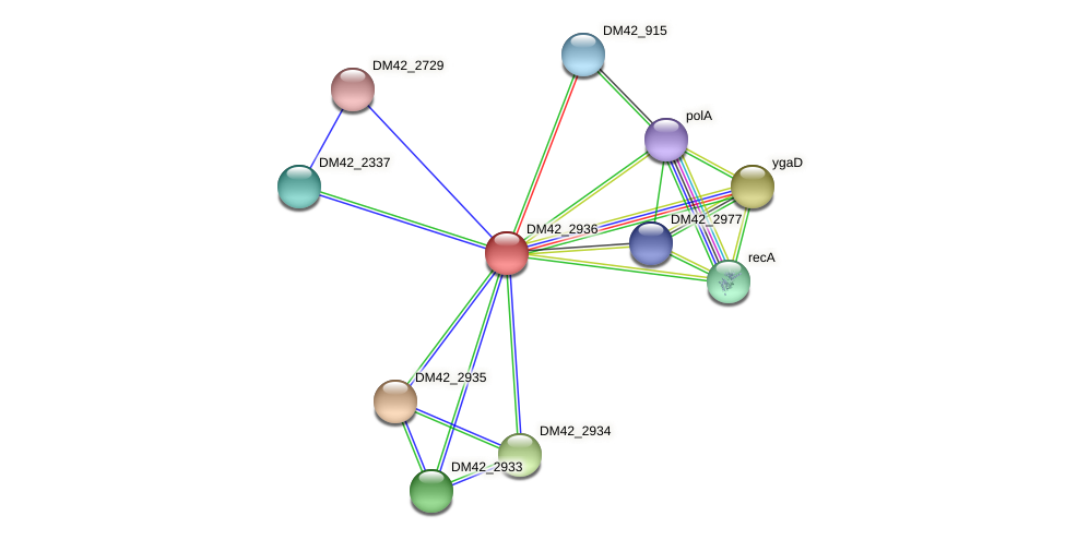 WI67_11635 protein (Burkholderia cepacia) - STRING interaction network