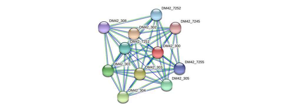 DM42_300 protein (Burkholderia cepacia) - STRING interaction network